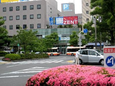 Photo_128